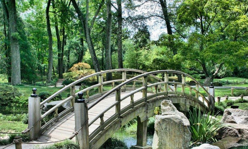 גינה יפנית - קורס עיצוב גינות